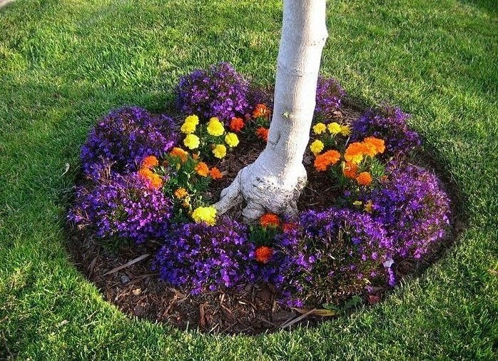 Какие растения можно сажать под деревьями