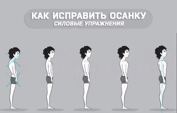 как исправить осанку_силовые упражнения