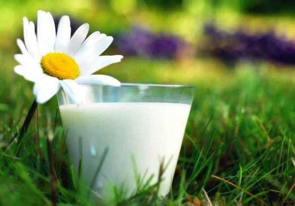 Применение в огороде соли, соды, горчичного порошка, кефира, дрожжей, молока, Колы и Пепси