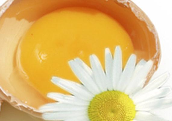 Яичные маски для волос домашние рецепты