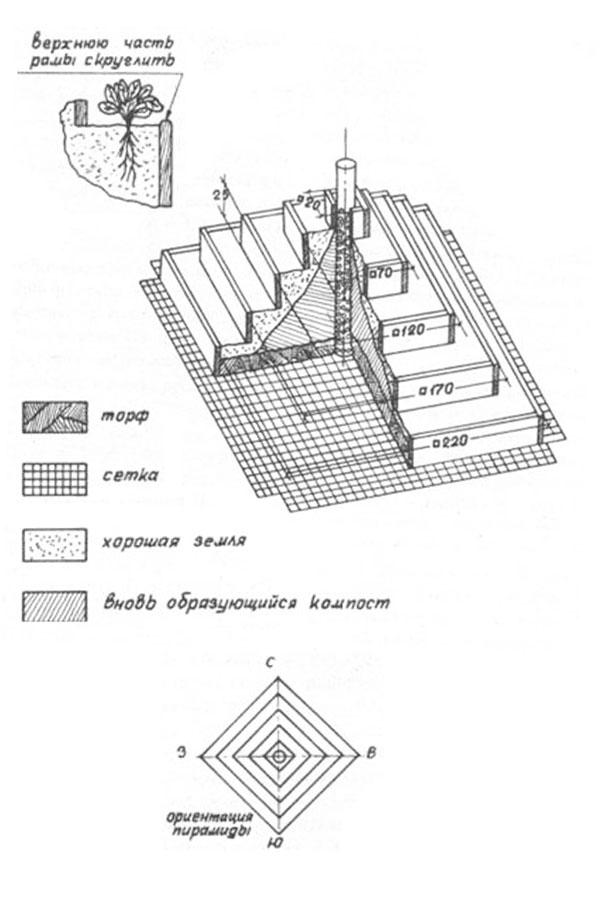 Грядка пирамида для клубники: размеры, фото и чертежи