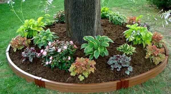 простой дизайн декоративной щепой вокруг дерева
