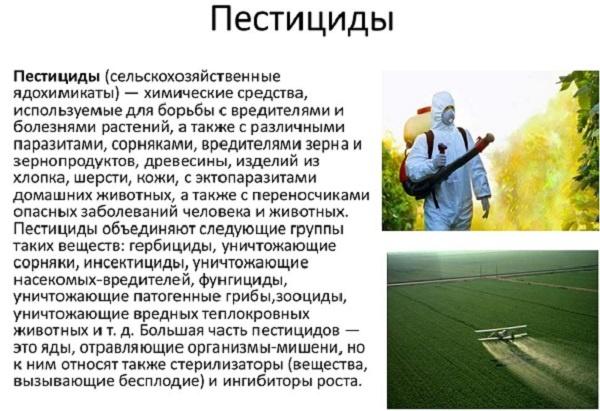 определение пестицидов
